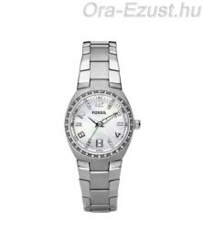 Fossil Other AM4141