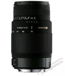 SIGMA 70-300mm f/4-5.6 DG OS (Canon)
