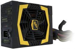 FSP AURUM PRO 1000W Gold (PPA10A1401)