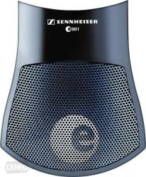 Sennheiser E901