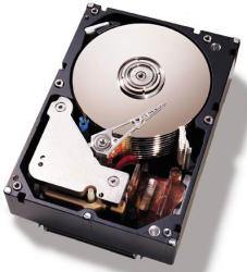 IBM 1TB 7200rpm SATA 81Y9806