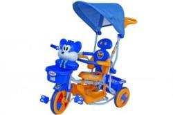 Arti Tricicleta copii cu copertina 2830