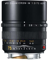 Leica APO Summicron-M 1:2 / 75mm