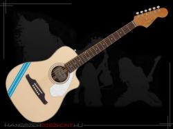 Fender Malibu CE