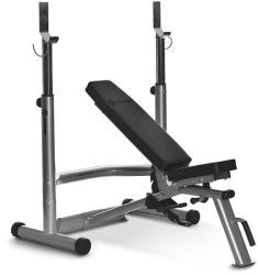 Horizon Fitness Adonis Plus
