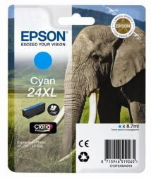 Epson T2432