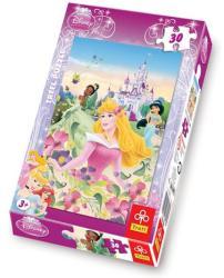 Trefl Disney Hercegnők - Nyári reggel 30 db-os (18156)