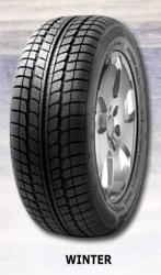 Fortuna Winter 195/55 R16 87H
