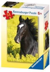Ravensburger Fekete ló a réten 54 db