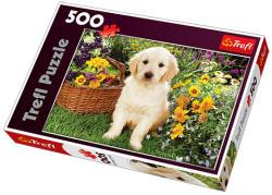 Trefl Kölyök labrador 500 db-os (37160)