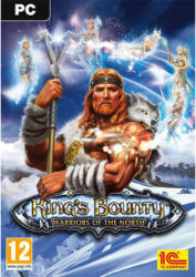 1C Company King's Bounty Warriors of the North (PC)