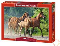 Castorland Arab telivérek 2000 db (C-200313)