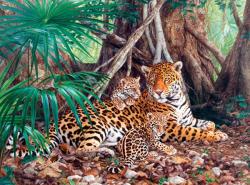 Castorland Jaguárok a dzsungelben 3000 db-os (C-300280)