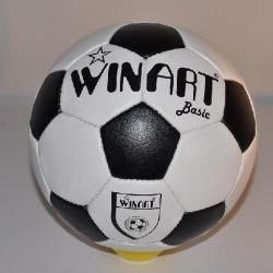 Winart Basic