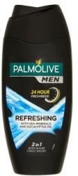 Palmolive Refreshing 2in1 250ml