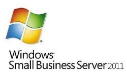 Microsoft Windows Small Business Server 2011 CAL 64bit ENG (1 User) 6UA-03580