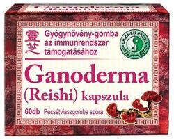 Dr. Chen Ganoderma Reishi kapszula 60db
