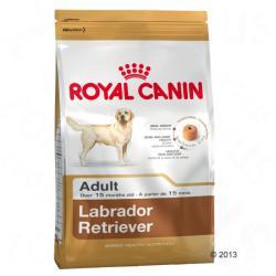 Royal Canin Labrador Retriever Adult 2 x 12kg