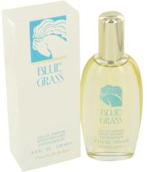 Elizabeth Arden Blue Grass EDP 100ml Tester