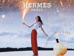 Hermès Eau Des Merveilles EDT 100ml Tester