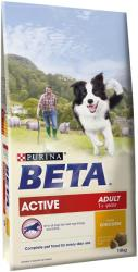 Dog Chow Active 15kg