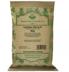 Herbária Lándzsás Útifű Levél Tea 40g