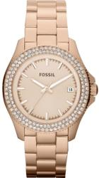 Fossil AM4454