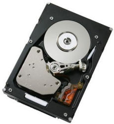 IBM 1TB 7200rpm SAS 81Y9872