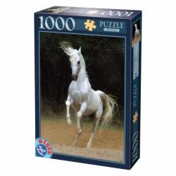 D-Toys Cai 1000