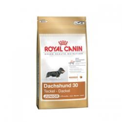 Royal Canin Dachshund Junior 500g