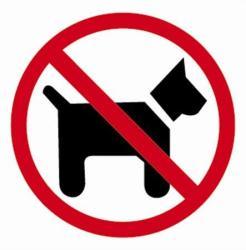 Apli Kutyát Bevinni Tilos Információs Matrica