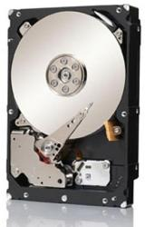 Seagate Constellation ES.3 1TB SATA3 ST1000NM0053