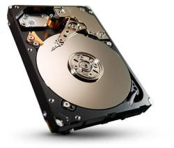 Seagate Savvio 600GB SAS ST600MM0006