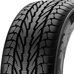 Apollo Alnac Winter 205/55 R16 91H