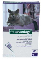 BAYER Advantage 80 Spot On 4kg feletti 0.8ml (4db)