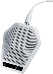 Audio-technica U891RWx