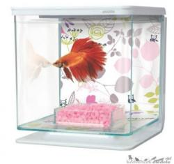 Hagen Marina Betta Kit (2L)