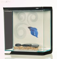 Hagen Marina Betta Kit (3L)