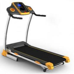 FitTronic DK-01A