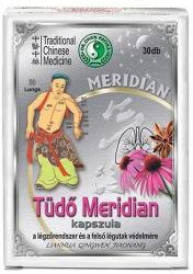 Dr. Chen Tüdő meridian kapszula 30db