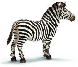 Schleich Zebra csődör
