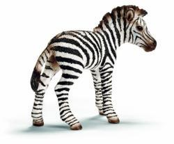 Schleich Zebra csikó (14393)