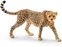 Schleich Gepárd nőstény