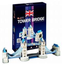 Shantou Tower Bridge 41 db 3D