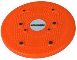 inSPORTline Disc Magnetic (483)