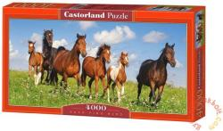 Castorland Ménes 4000 db