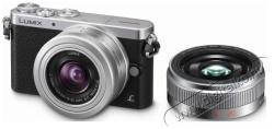 Panasonic Lumix DMC-GM1W + 12-32mm + 20mm