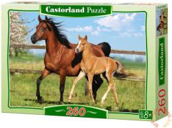 Castorland Barna ló és csikó 260 db-os (B-27064)