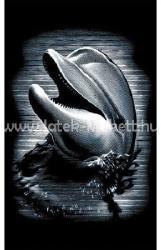 Reeves Mini ezüst képkarcoló - Delfin