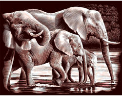 Reeves Arany képkarcoló - Elefántok (PPCF37)
